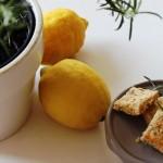 Buch-Tipp und knsuprige Rosmarin Cracker