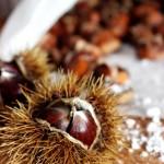 Kleine Köstlichkeiten: Geröstete Maronen aus dem Ofen