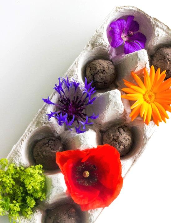 kuechenkraenzchen Samenbomben I Seedbombs als Gastgeschenk